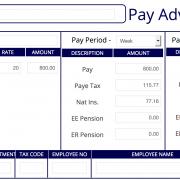 Standard A3 PaySlip